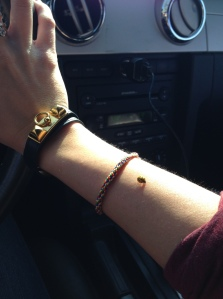 Ladybug stayed on me in the car.